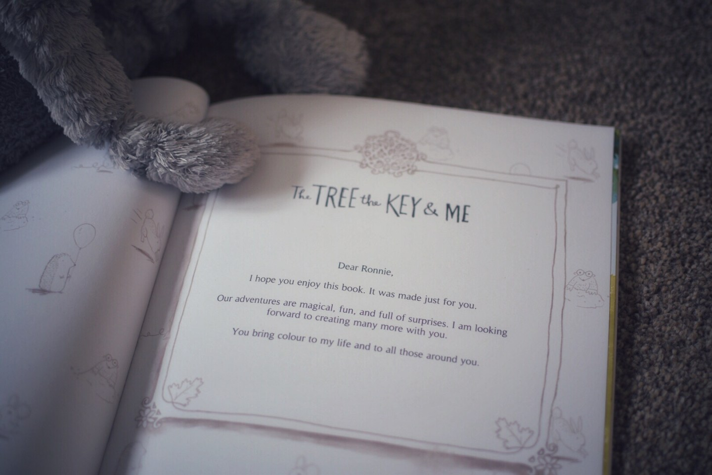 The tree, the key and Me is a magical adventure featuring your little one as the hero. Create your character from over 8,000 possibilities.