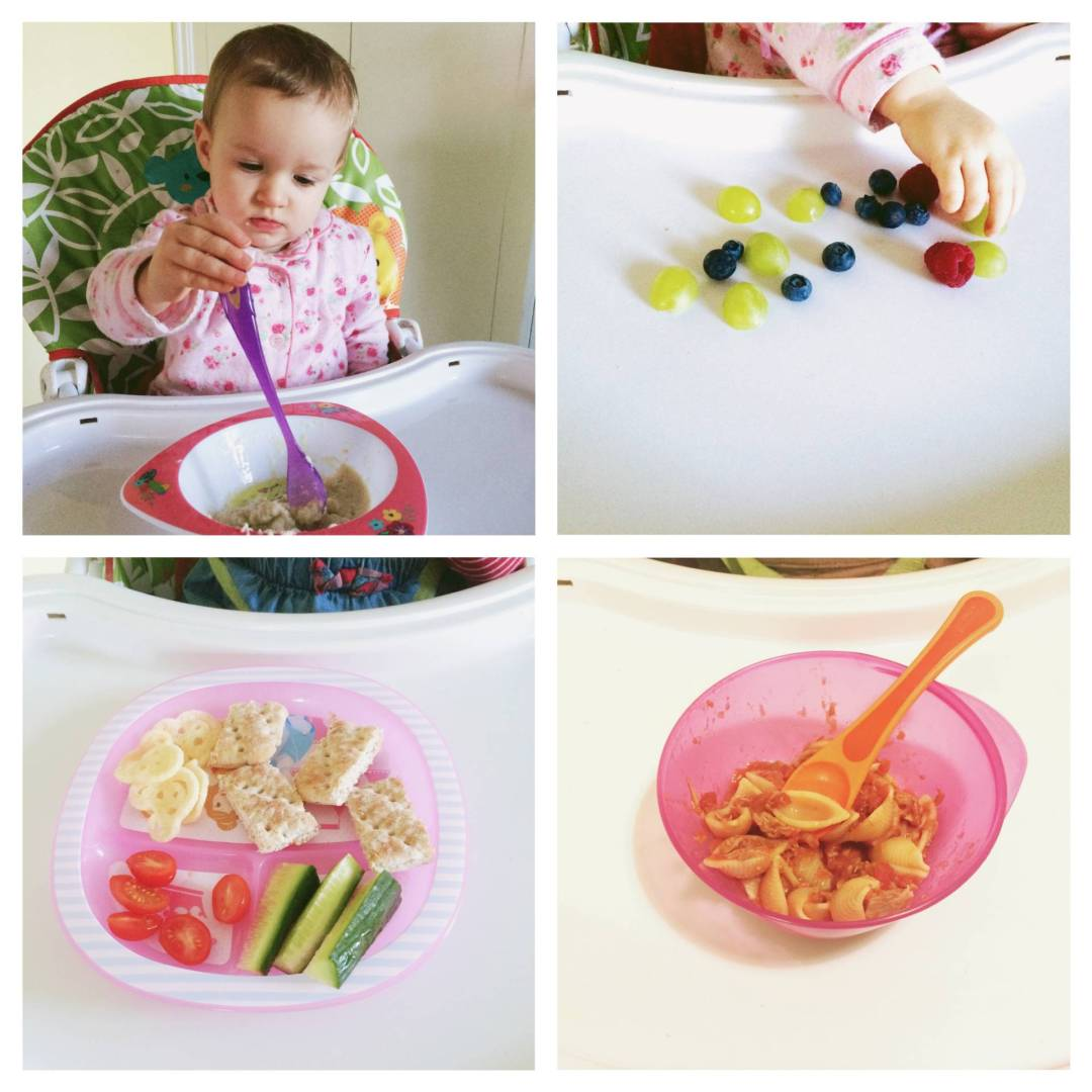 allergy friendly baby and toddler meals free from dairy, soya, egg, peanut and strawberry. Quick and easy allergy free meals.