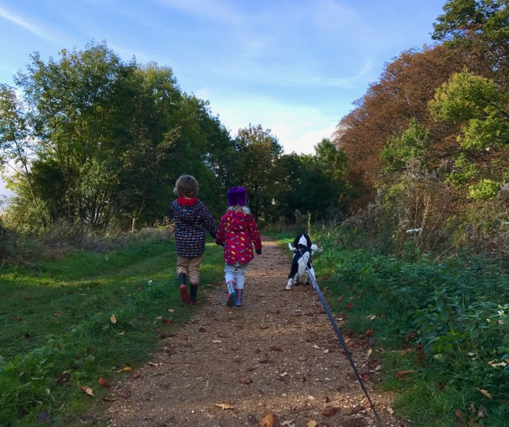 An autumnal walk in the woods #CountryKids