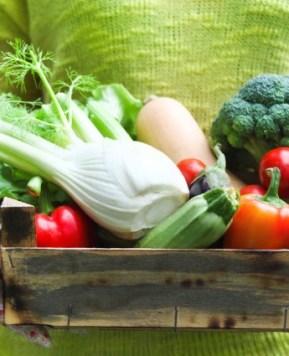 Three weeks into my vegetarian lifestyle #VegeLover