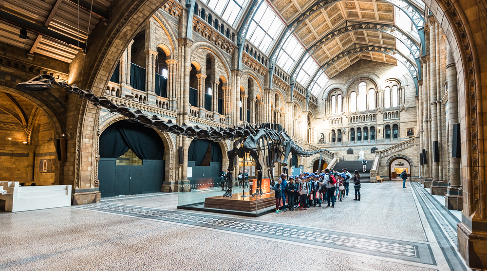 Fun and exciting things to do with the kids in London