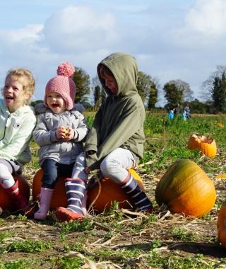 Pick your own pumpkins and a maize maze #Outdoorfun