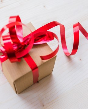A fun gift guide for the grown ups this Christmas
