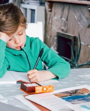 Ways to make homeschooling UK more fun