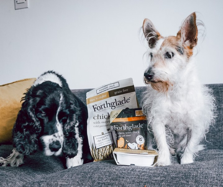 Win a Forthglade bundle for your dog 🐶