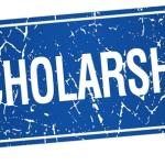 My Logo : Gani Fawehinmi Scholarship Foundation