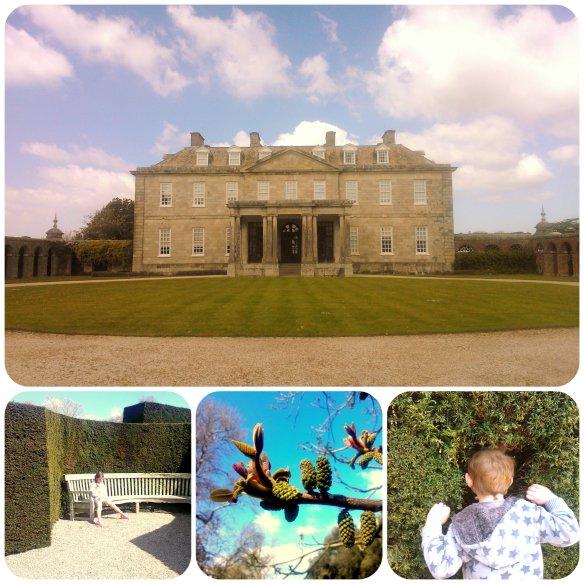 Anthony House National Trust 4