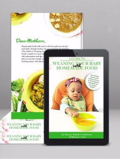 The Baby Weaning eBook