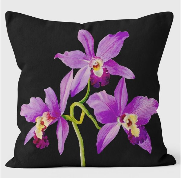 Christmas gift guide 2017 - Ladies - RHS Orchid