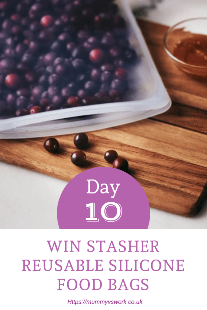 Day 10 - Stasher reusable silicone food bags