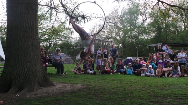 Acrobatics from a tree
