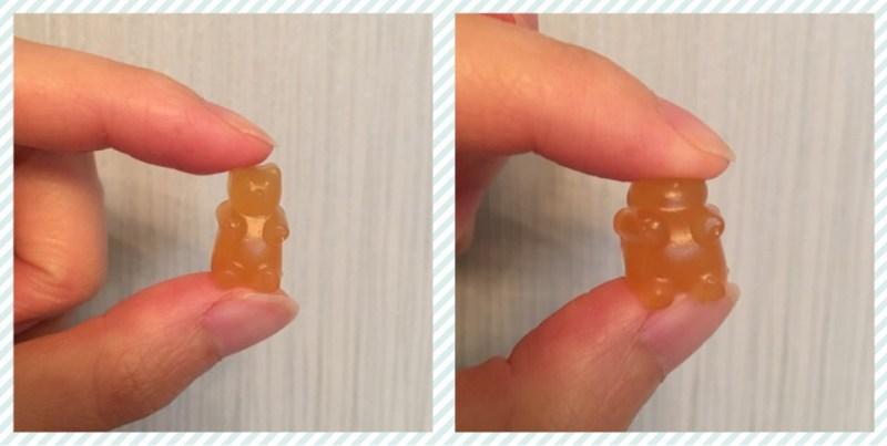 Squidgy Gummy Bears