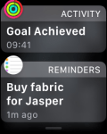 Notifications on the Apple Watch