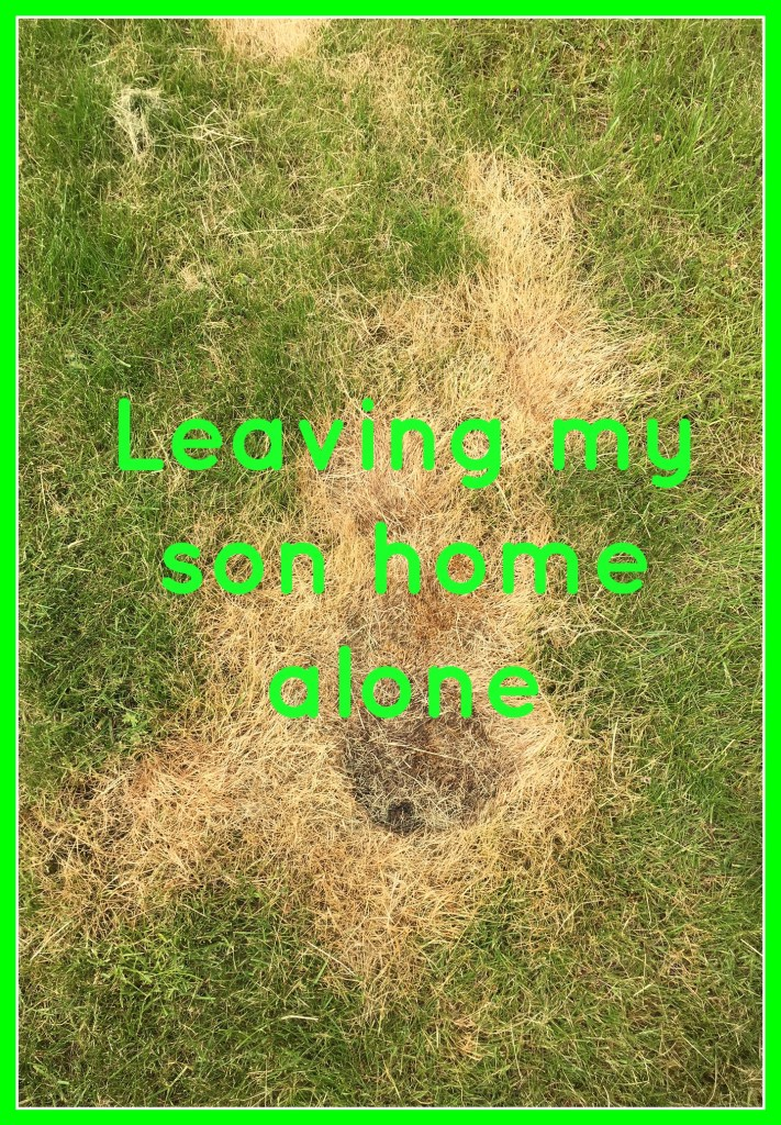 Grass, Burnt grass, Teenager, Son, Leaving my son home alone