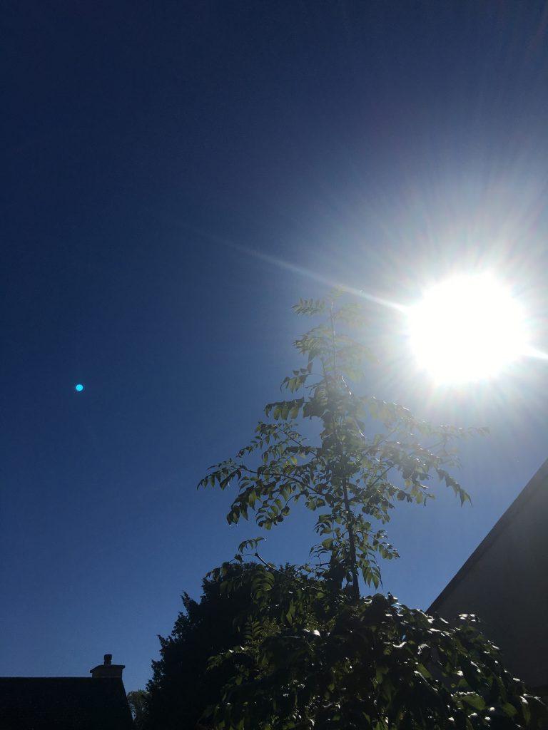 Sun, Sky, 365