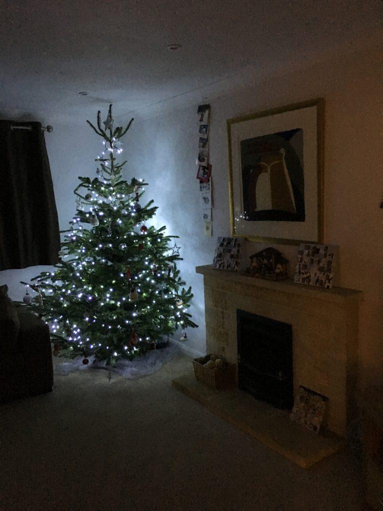 Christmas tree, Christmas decorations, 365