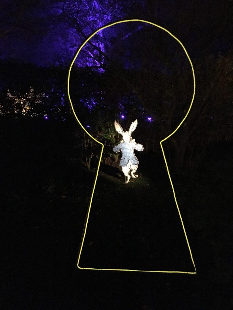 My Sunday Photo, Silent Sunday, Sudeley Castle Spectacle of Light, Alice in Wonderland