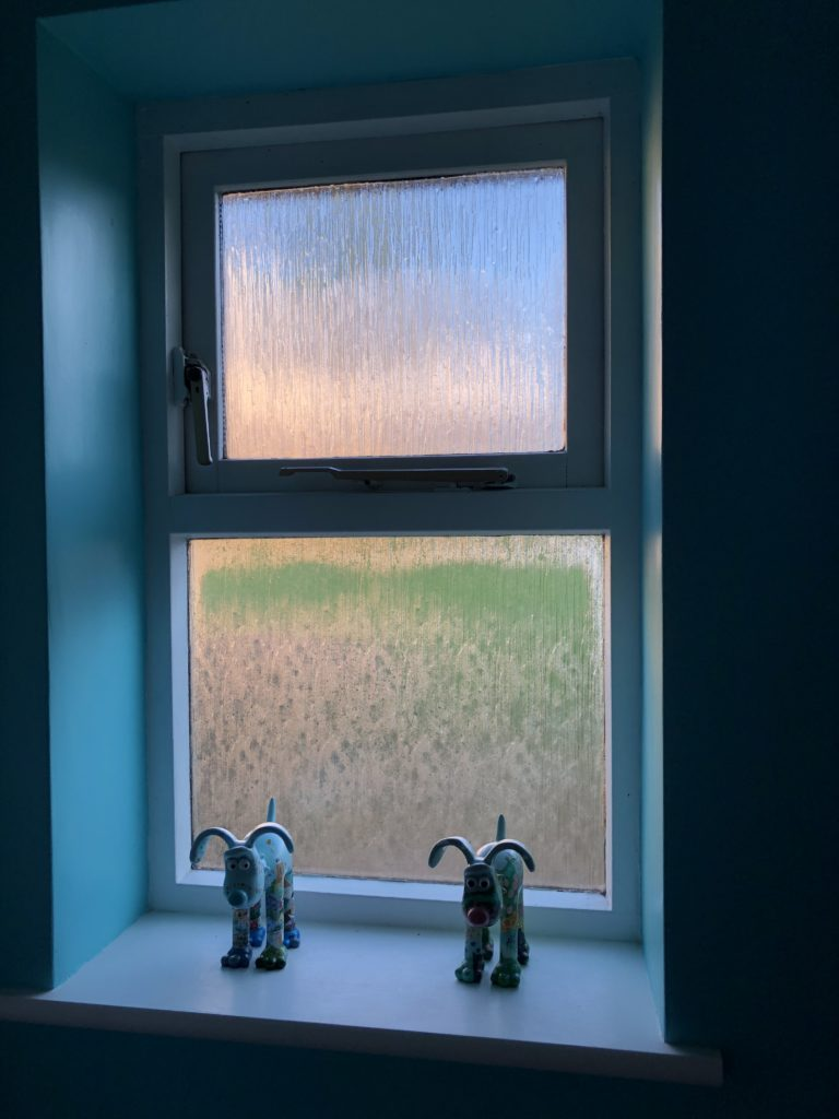 Window, morning, Instagram, 365