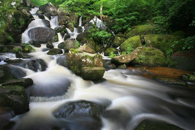 Things to do around Bovey Castle and Dartmoor with kids