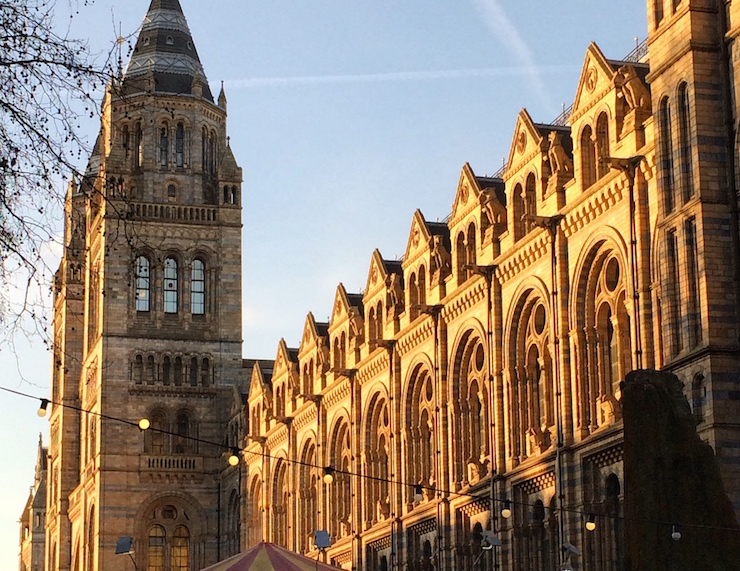 Natural History Museum, London. Copyright Gretta Schifano