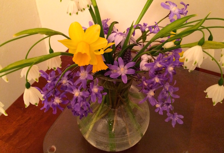 Fresh spring flowers at Slade Cottage. Copyright Gretta Schifano