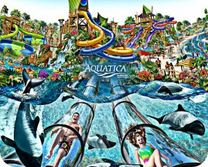 Aquatica, Aquatica Florida, Sea World, Sea World Orlando, Orlando, Orlando Attractions, Florida Attractions