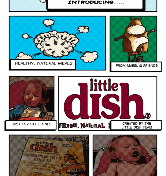 Little Dish Review 6