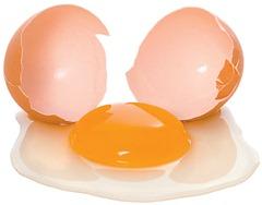 broken_egg