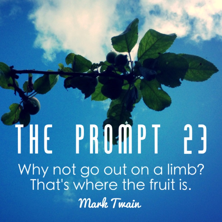 The Prompt 23: Risk and Reward