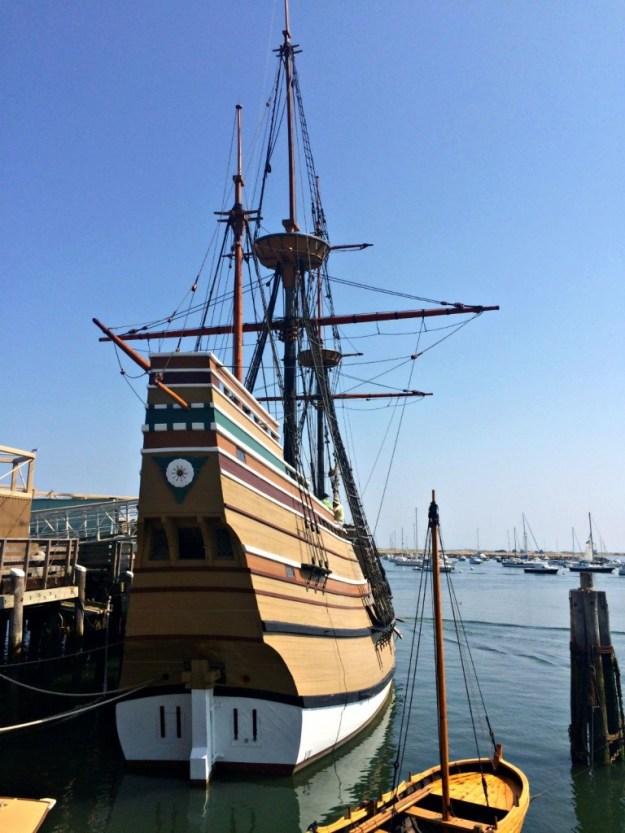 Mayflower 14