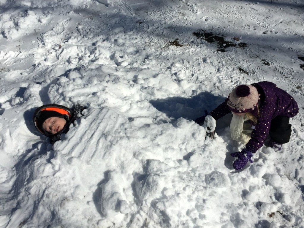 Buried in Snow 6