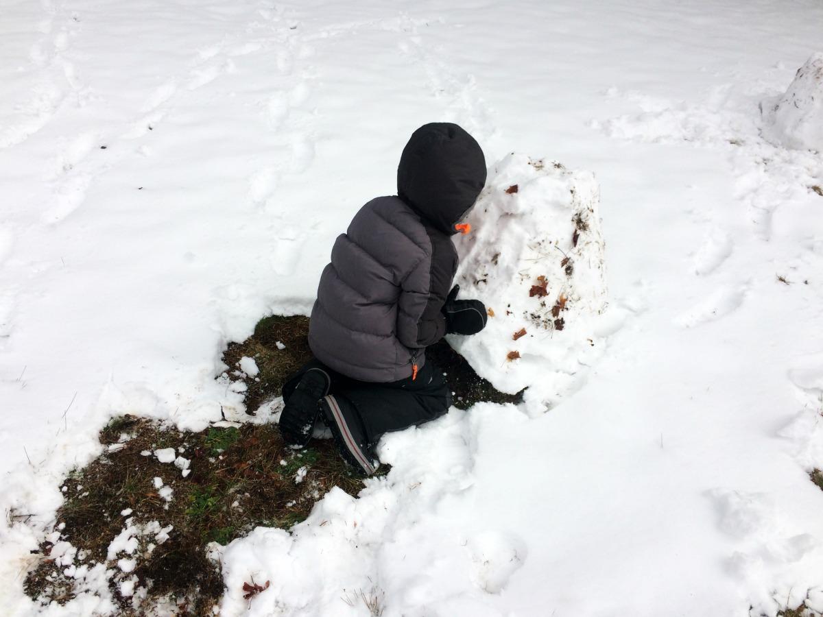 Snow Fort 2