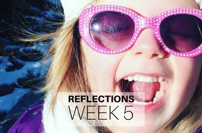 Reflections Week 5