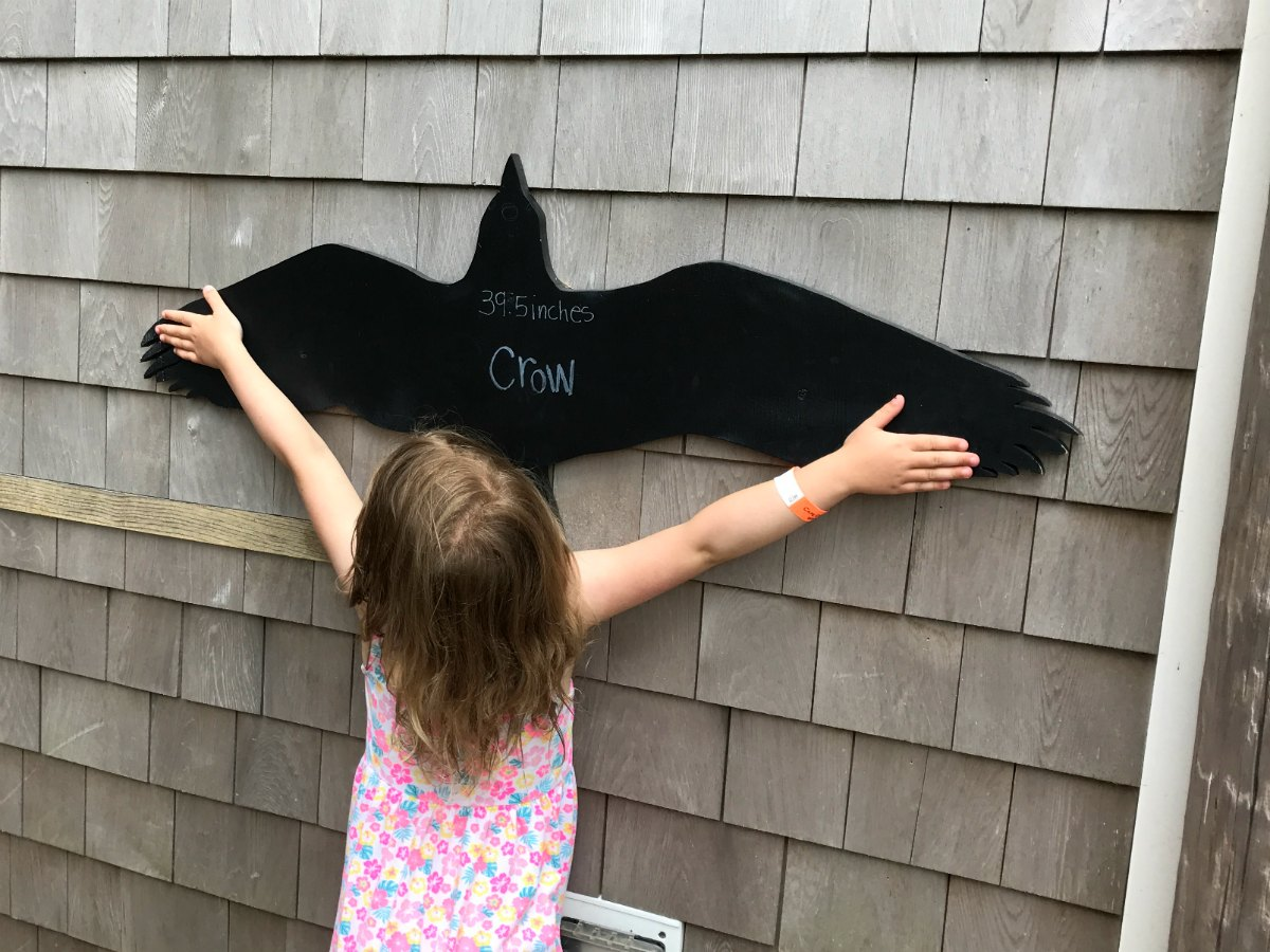 Snapshots from Cape Cod 18