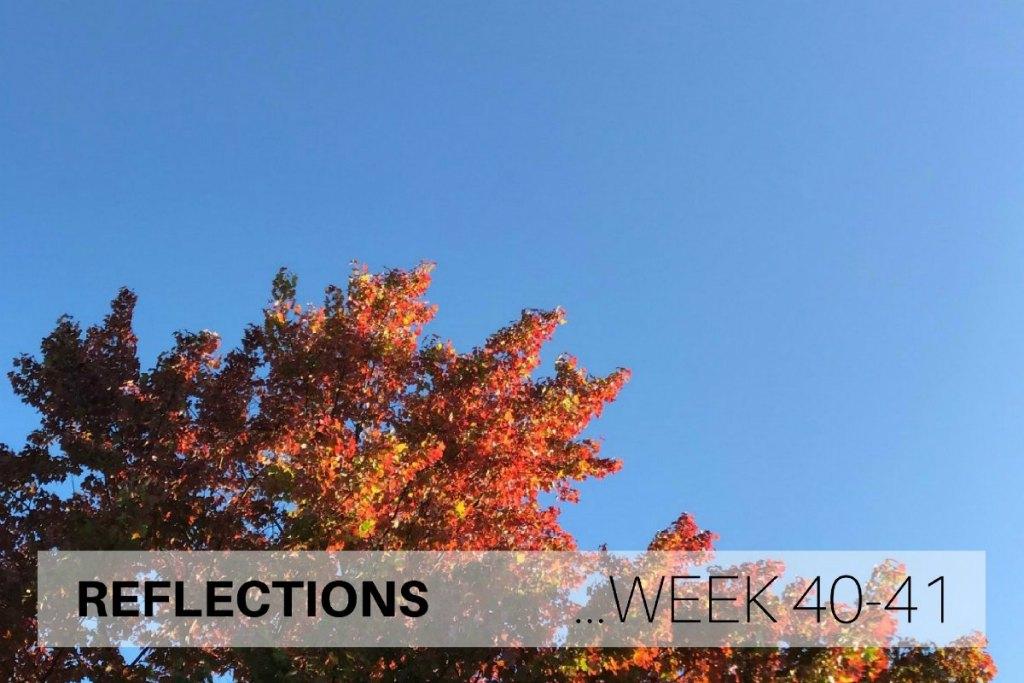 Reflections Week 40-41