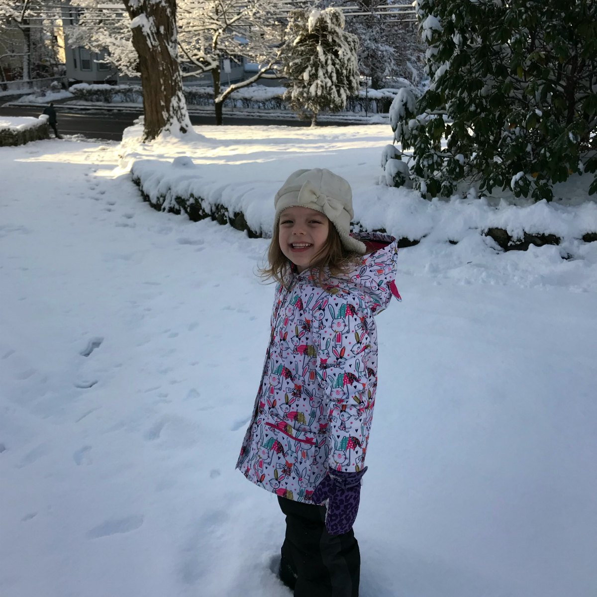 Snapshots from the snow 7