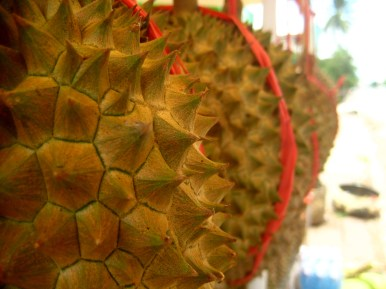 Durian, smells like vomit, tastes like some mix between very old cheese and some strong vegetable -> I don't like it!!
