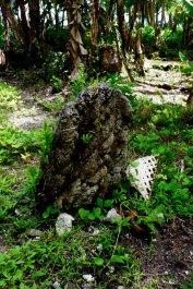 remnants of an old civilization
