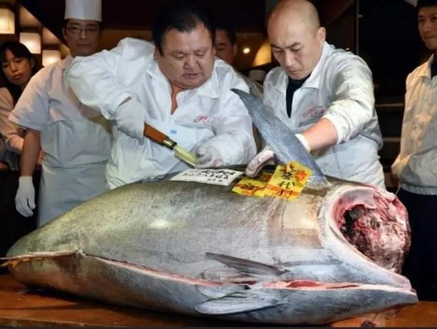 Atum de 180 kg é arrematado por 4,51 milhões de ienes no primeiro leilão do ano no mercado Tsukiji (Foto: Kyodo)