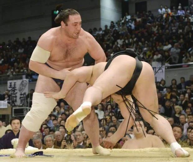Tochinoshin derrota Harumafuji no 8º dia do Torneio de Sumô de Primavera 2015 (Foto: Kyodo)