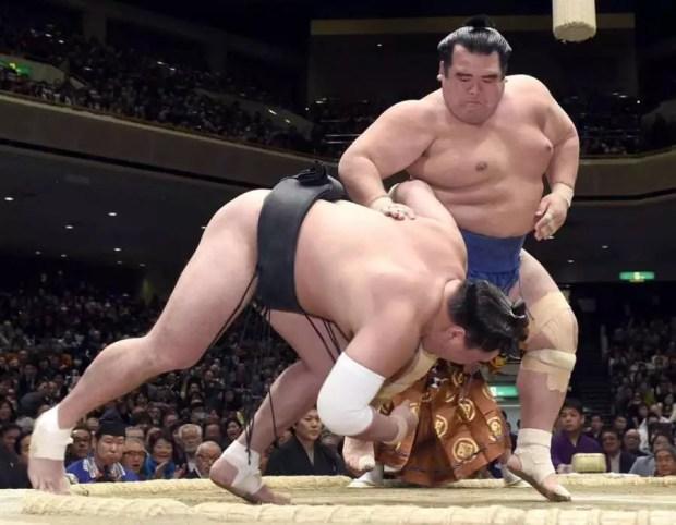 Kotoshogiku vence Harumafuji no 12º dia Torneio de Sumô de Ano Novo 2016 (Foto: Kyodo)