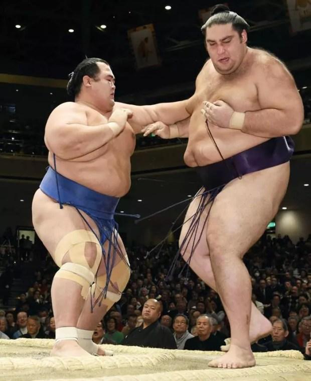 Kotoshogiku vence Kaisei no 9º dia Torneio de Sumô de Ano Novo 2016 (Foto: Kyodo)