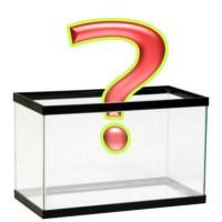 Interrogantes acuario