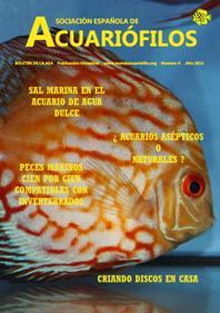 Boletín de la AEA nº4 2013