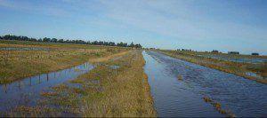 inundados.1