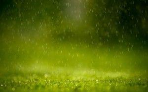 lluvia EN EL CAMPO 01