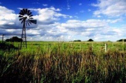 campo-argentino
