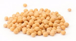 handful of soy beans isolated on white background