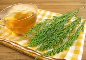 remedio té de cola de caballo