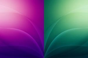 Fondo general dos colores